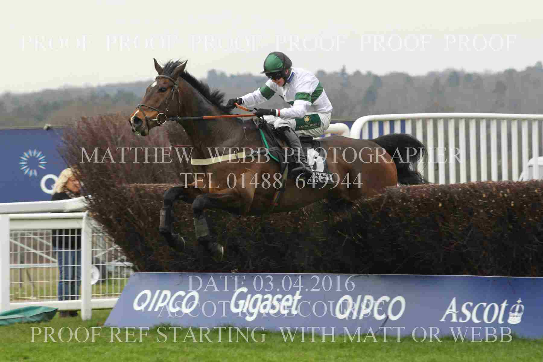 Big Jim Jumping At Ascot