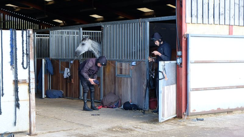 Joey and Max sorting tack to ride out