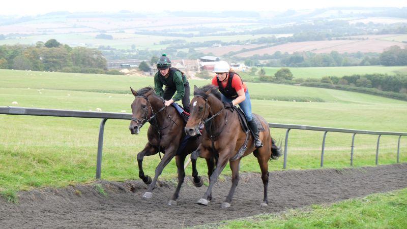 'Twiggy' and Mor Brook