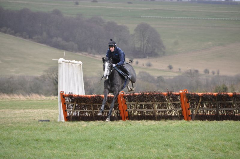 Here is a slection of Sunblazer jumping hurdles with Nick Scholfield yesterday