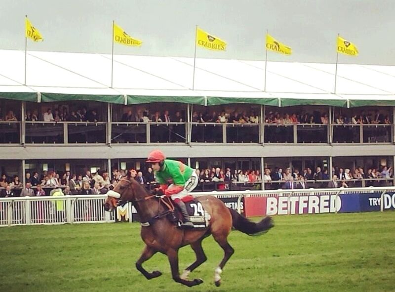 The rainbow Hunter heading to the start in Saturday's Crabbies Grand National
