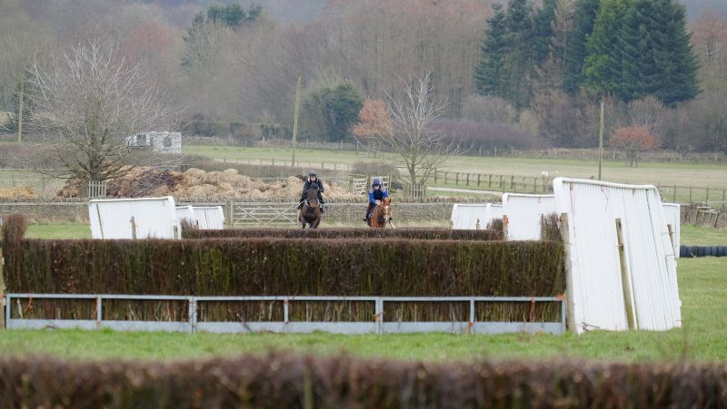 Ballywatt and Savant Bleu jumping the 2nd fence
