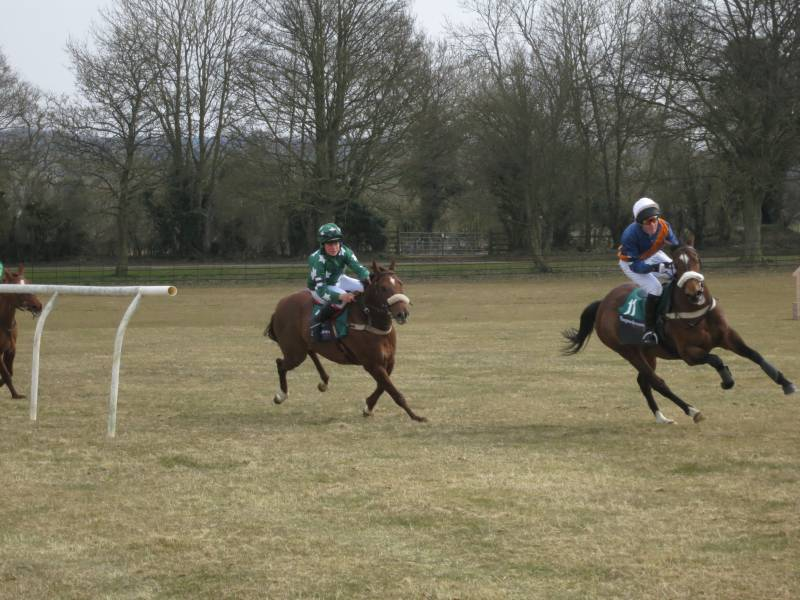 Pony racing at speed