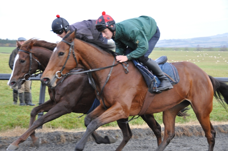 Penny Perriss's Smokey George working with TKBRP's Jacalou