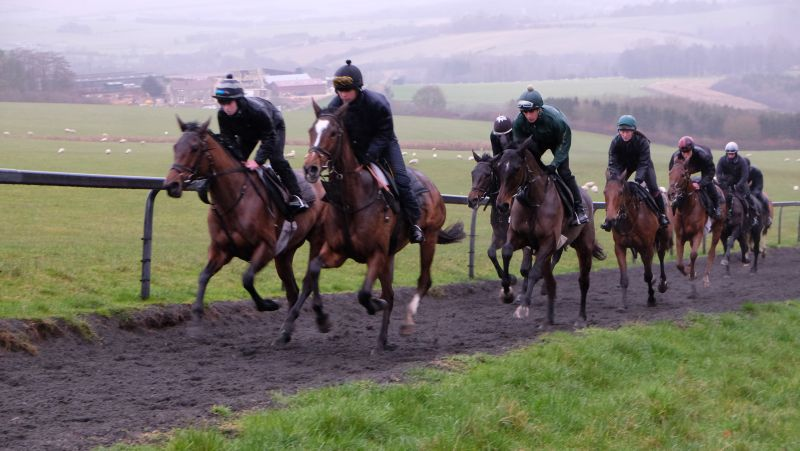 Cantering in the rain