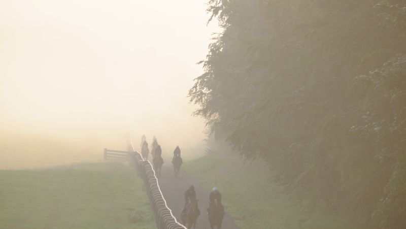 Another foggy start to the morning