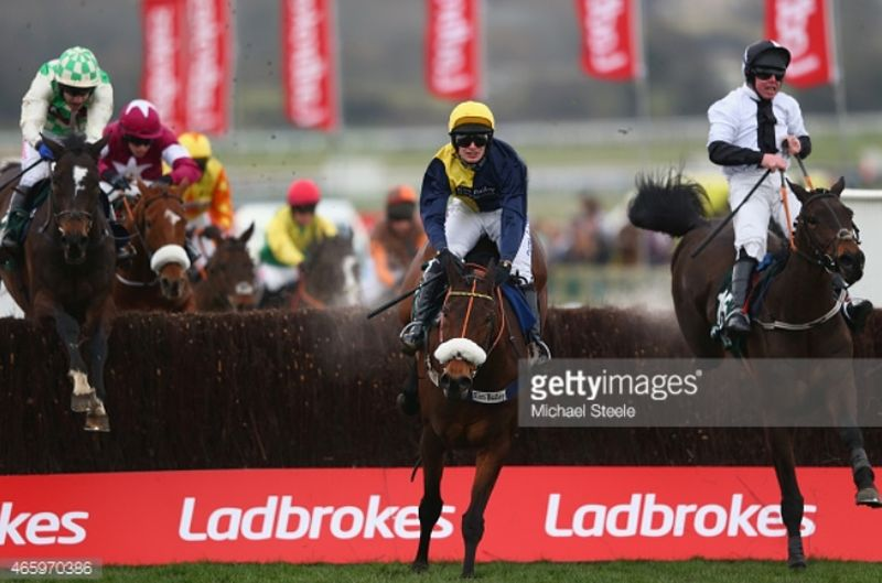 Darna jumping the last in front at the Cheltenham Festival.