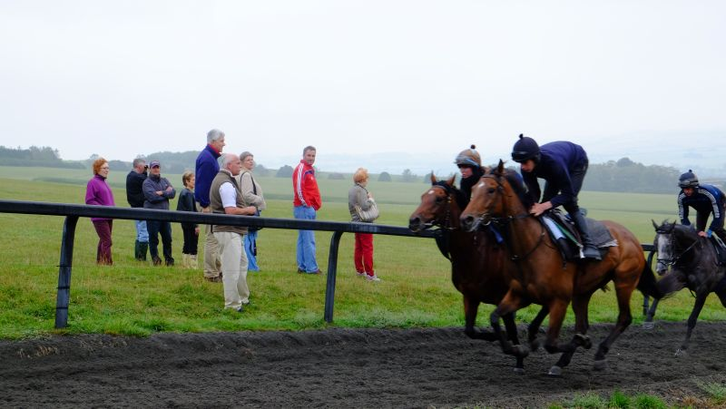 The sun finally appeared for 3rd lot.. Magic Money and Kibo galloping past the work watchers