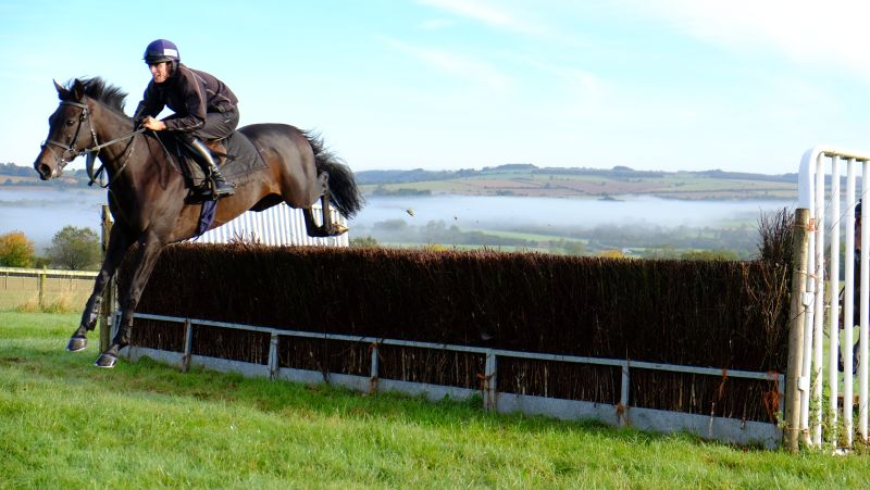 Up For An Oscar and Ed Cookson jumping fences