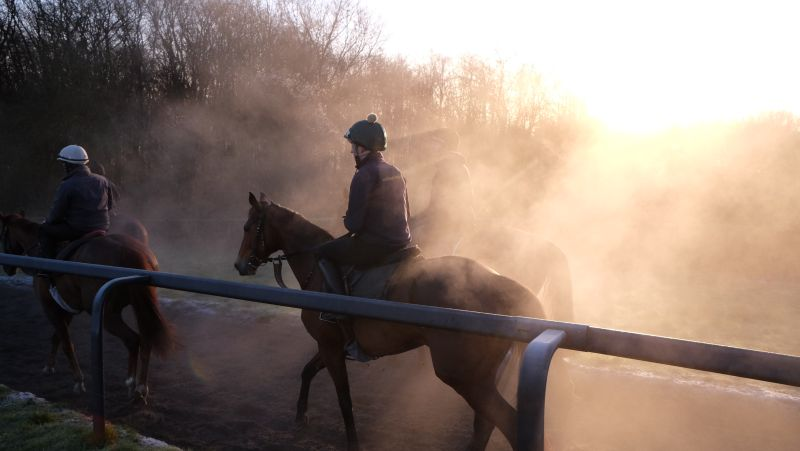 Heading home after second lot