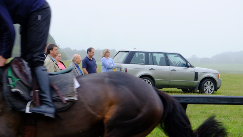 Watching the string of horses canter up the gallops