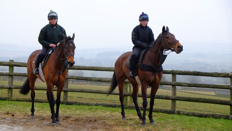Un Ace and darna looking none the worse for last weeks excercise