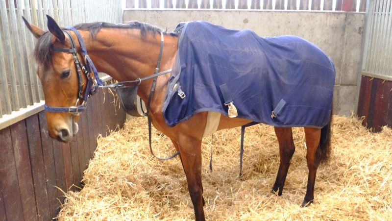 Emily Gray waiting to go out on excercise