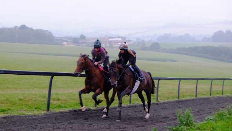 Derringtogher Bliss and Knocklayde Express