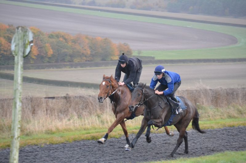 Such a Legend and Faerie Reel on the Lambourn gallops
