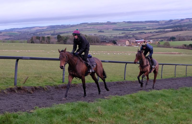 Ed Henderson leading Ed Bailey up the gallops