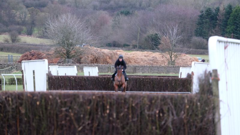 Not a good day for photos as it was far too dark.. Emily Gray and fences