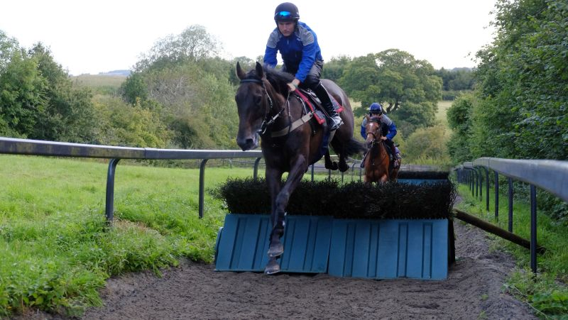 Amazing D'Azy and Tom Bellamy leading Bonne Fee