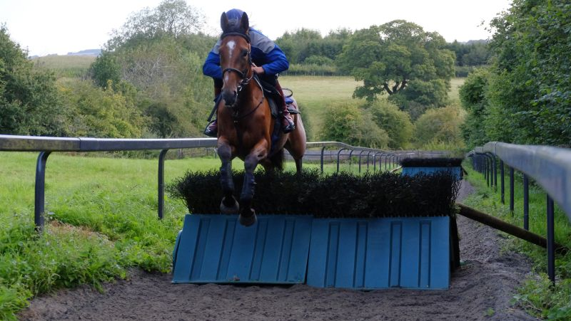 Bonne Fee and Ed Cookson. Bonne Fee is entered at Cartmel on Saturday