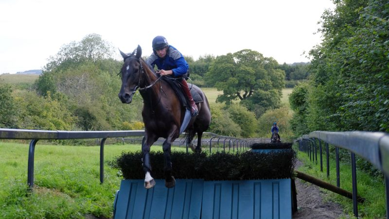Midnight Oscar and Ed Cookson. MO is entered at Ffos Las on Friday