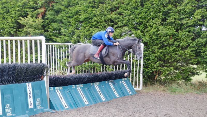 Sunblazer and Ed Cookson jumping the pastic hurdles