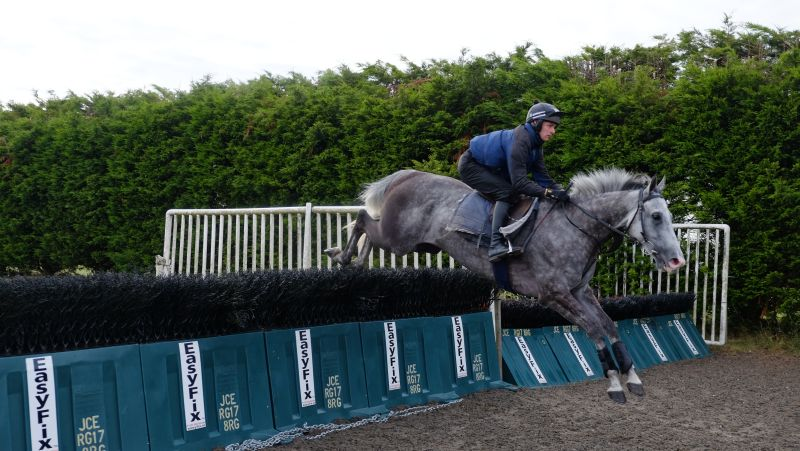 Viking Ridge and David Bass jumping the pastic fences