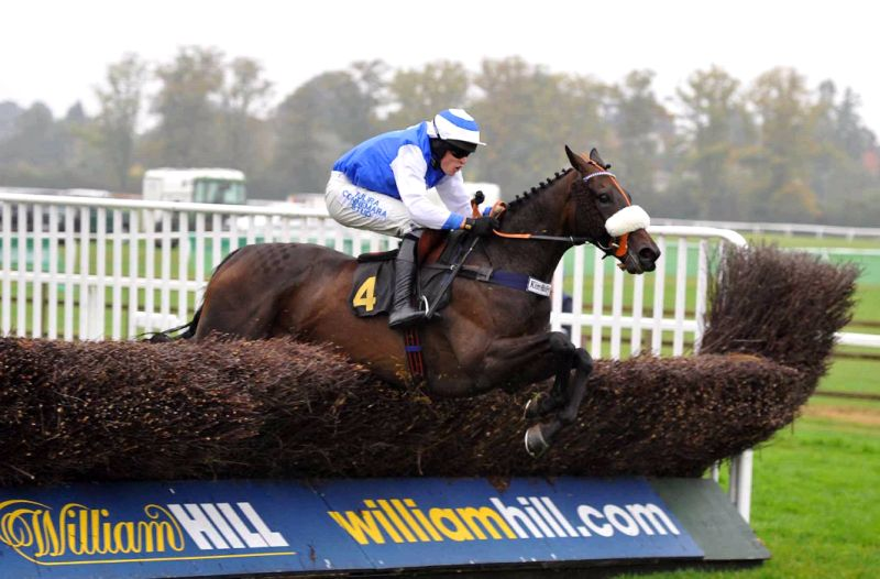 Les Hurley's photo of Ed Cookson jumping the last at Worcester on his mothers Up For An Oscar