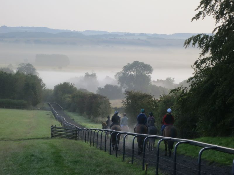 Back down the gallops