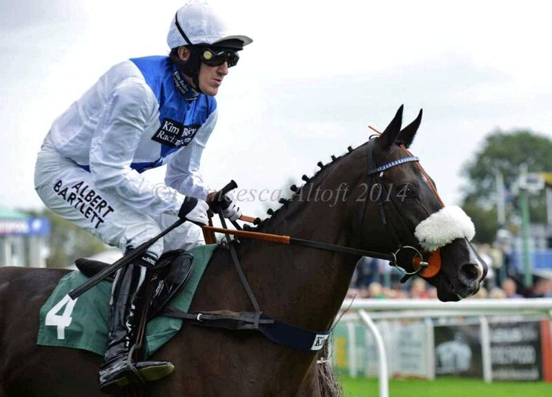 Milord and AP McCoy heading to the start.. Thanks to Francesca Altoft for this photo