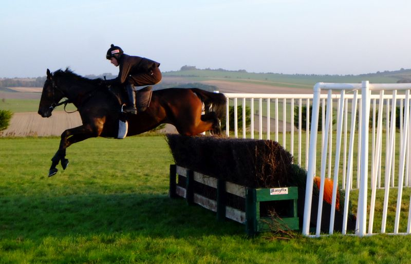 Jason and Harry Topper Schooling