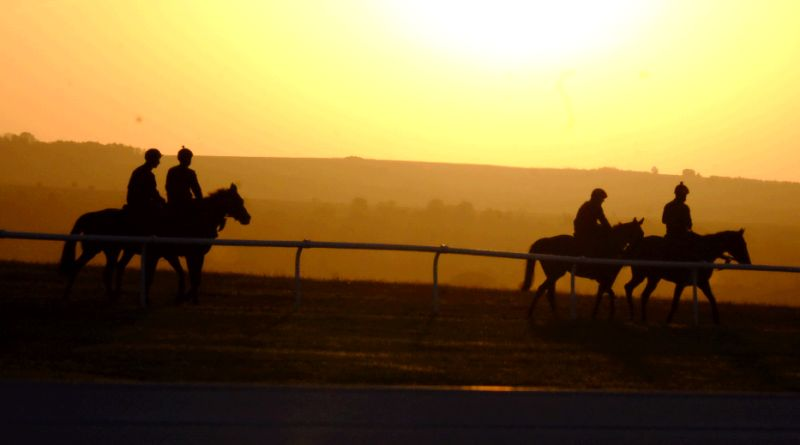 Early Morning Sunrise walking to schooling ground after working