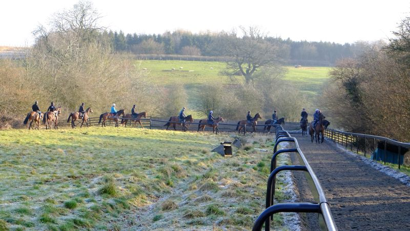 Heading into the bottom of the gallop first lot