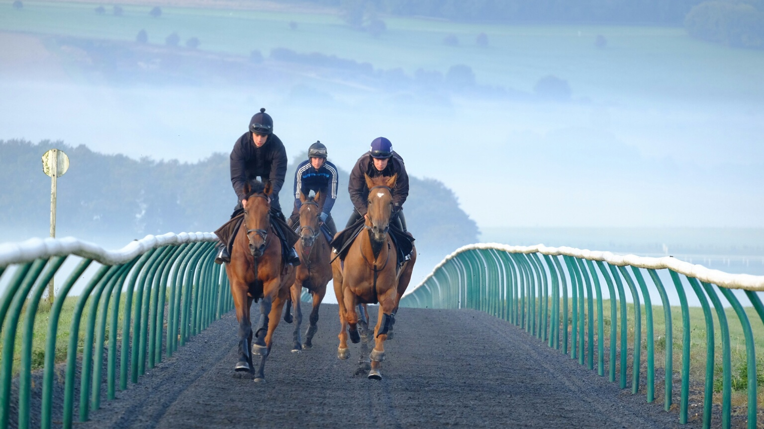 Gallery Exhibition and Fizzy Dancer doing a first canter in Lambourn