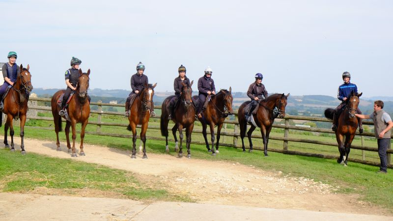 Azure Aware, Mollys A Diva. The Scarlett Woman, Knocklayde Express, The Drinkymeister, By The Boardwalk and Premier Portrait