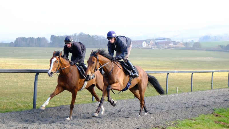 Abbreviate and King Simba working this morning