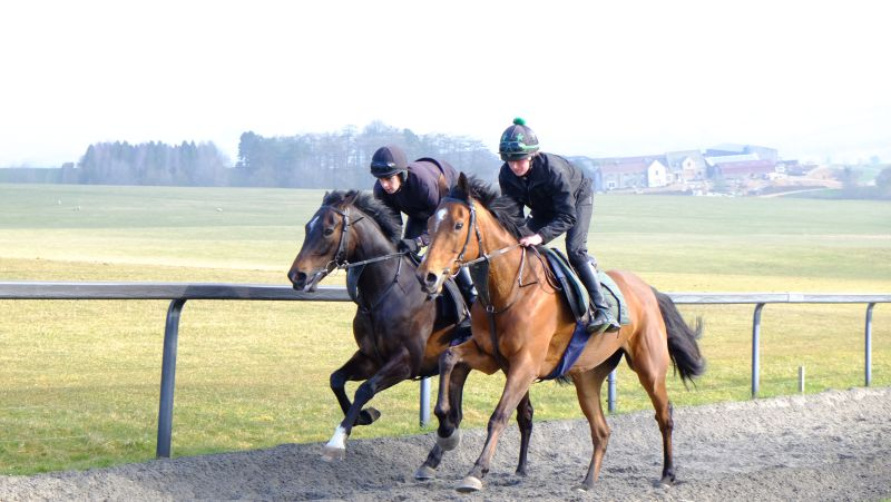 Mere Ancarchy and Bonne Fee this morning