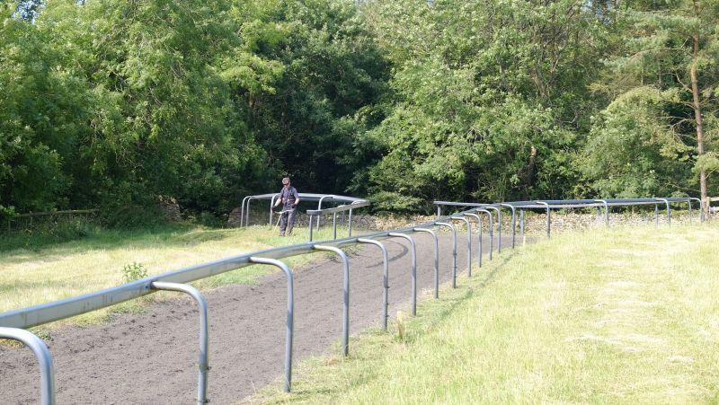 Higgs strimming the top of the gallops