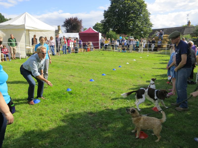 Dogs can you make you look a fool at Times.. George Dowty showing that he is just that!! Dog sausage catching competition!