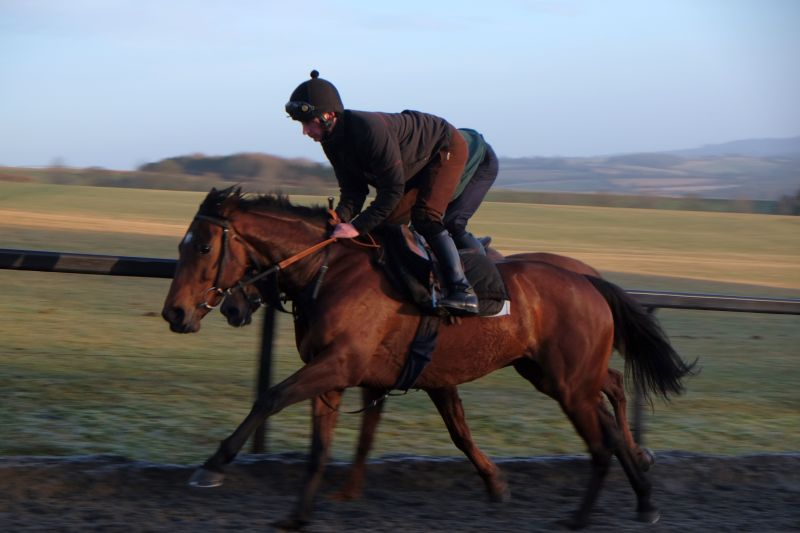 David Jenks's Magic Money working first lot