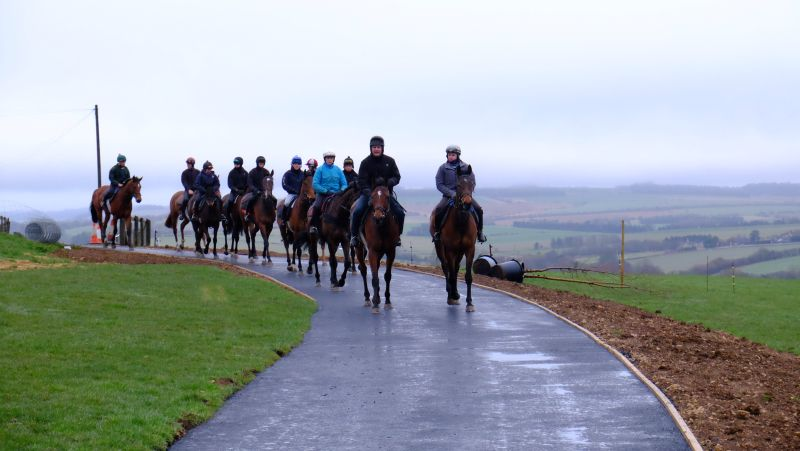 First time on the new drive and walkway to the gallops