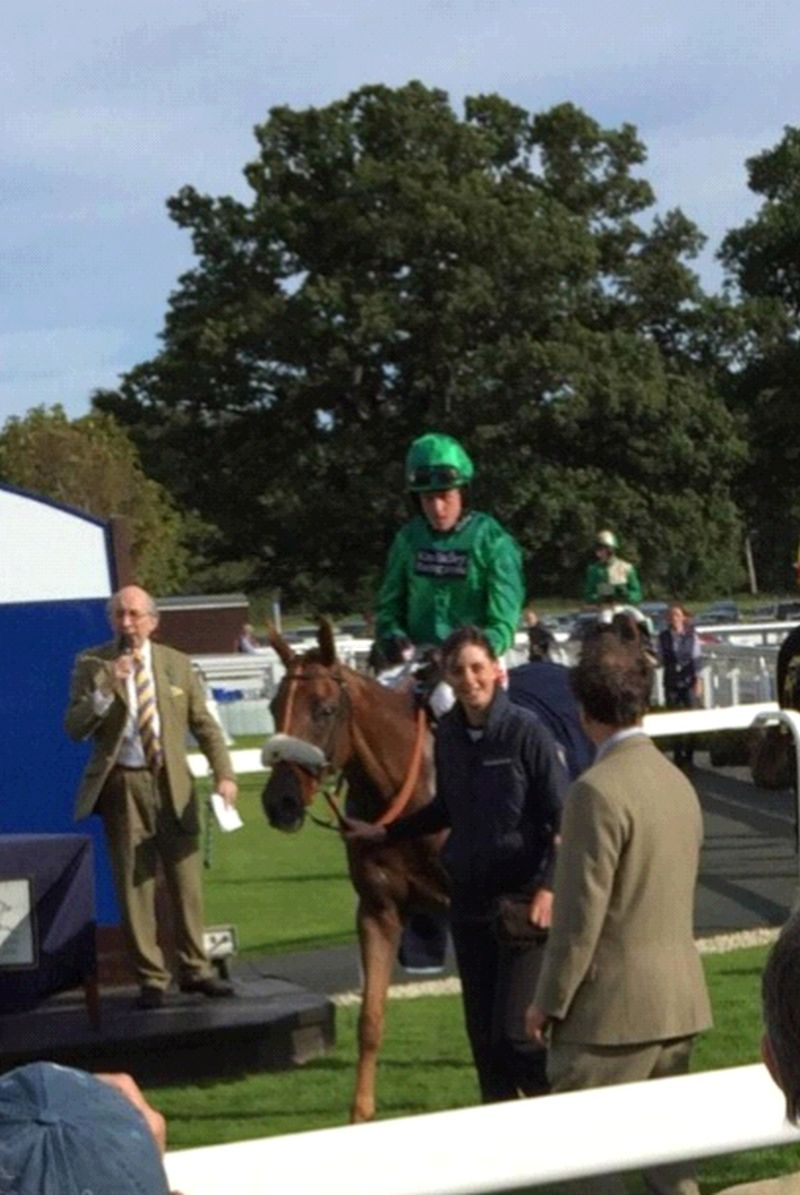 Patsys Castle returning to the winners enclosure..