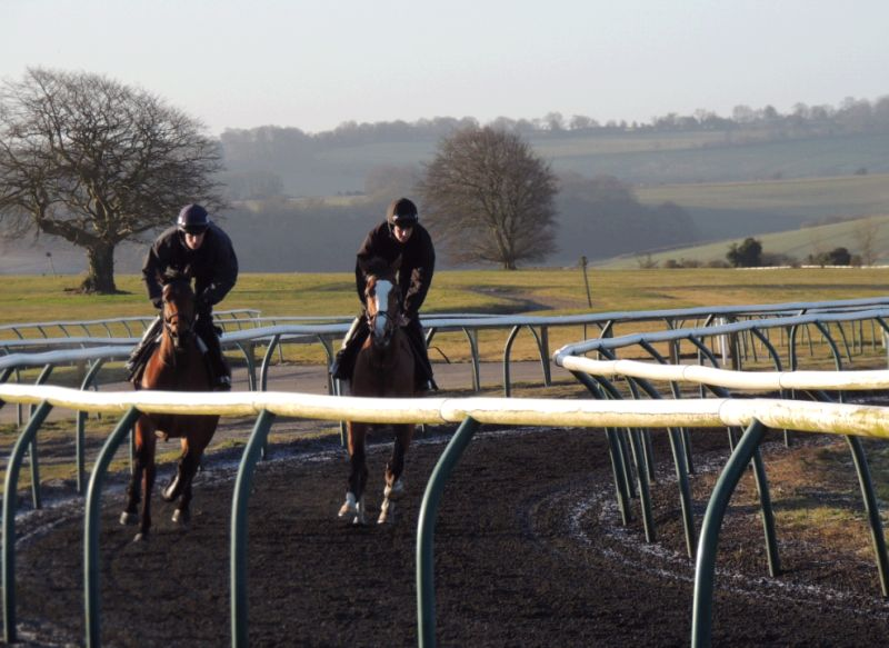 Rhianna and Taras Rainbow cantering up Fishers Hill in Lambourn