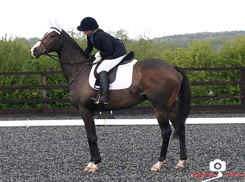 Soth Stack who won his first dressage competition the other day
