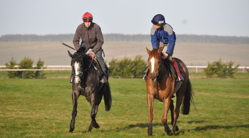 Yesterday the sun shone in Lambourn.. Sunblazer and Twelve Roses