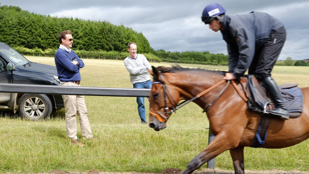 Steve O'Shaughnessy watching the horses come up the gallops with Peter Kerr