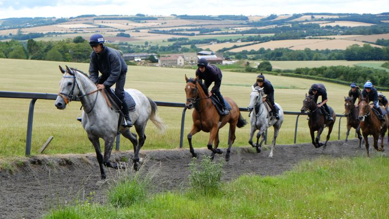 Silver Eagle leading Battle Dust and Knockanrawley