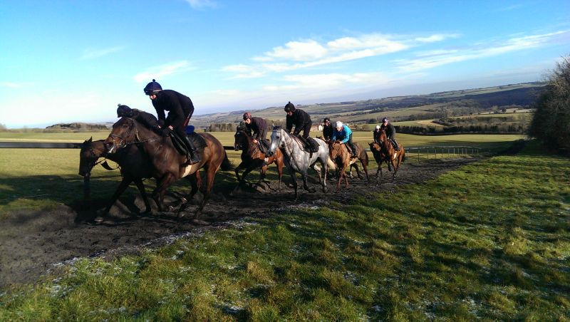 The string cantering up the gallop