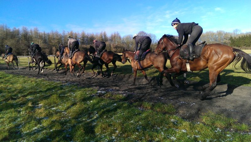 The string heading up the gallop