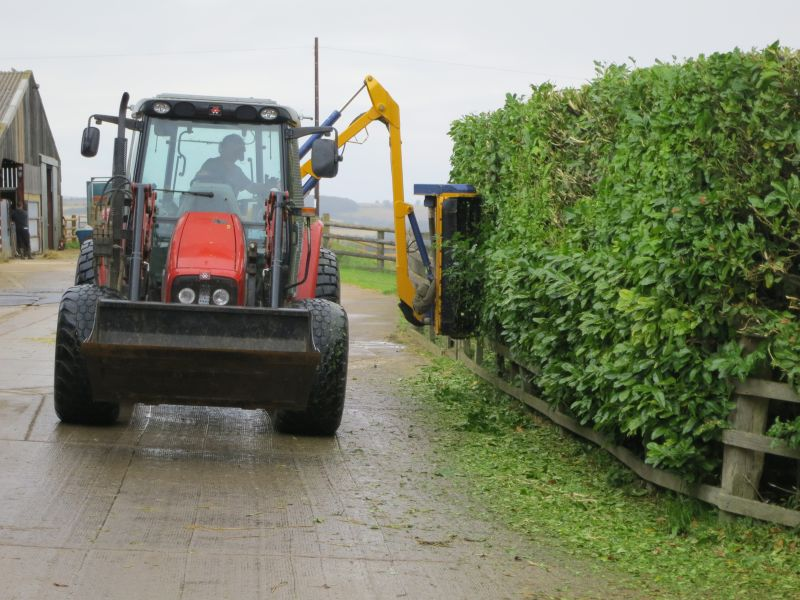 A bit of hedge trimming.. Easier by tractor than by hand? Thanks Kevin
