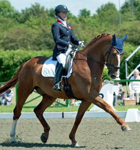 Noki at Hickstead